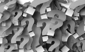 Bingo FAQs: Your Questions Answered